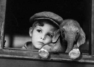 nen i elefantet