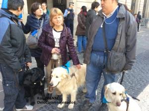 gossos_pigall_delocos_y_enajenados_2